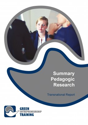 Summary Research Report